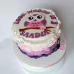 Owl birthday cake made by 4S Cakes bromley wedding cake makers